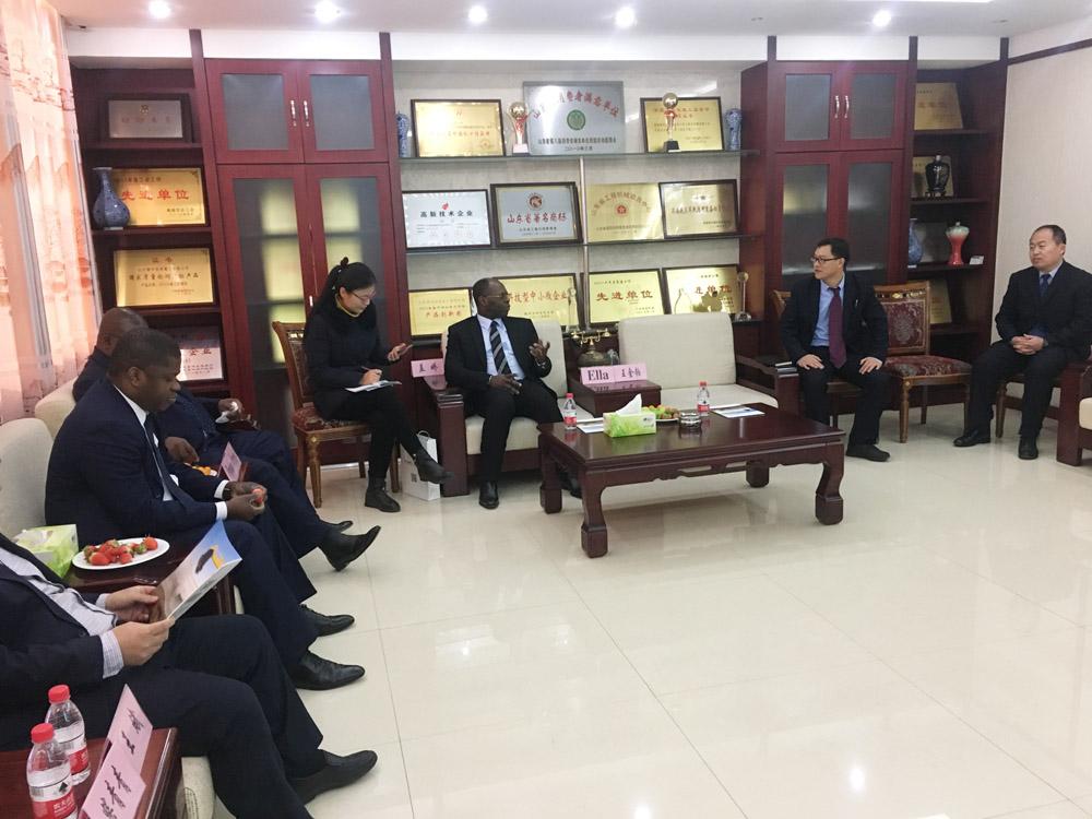 加蓬共和国驻华大使来禹城恒特重工参观考察